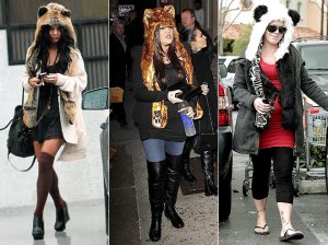 animal hoods